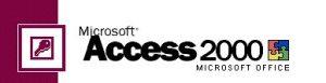 microsoft access funzioni semplici