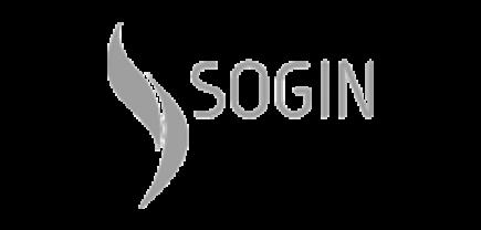 sogin_grey
